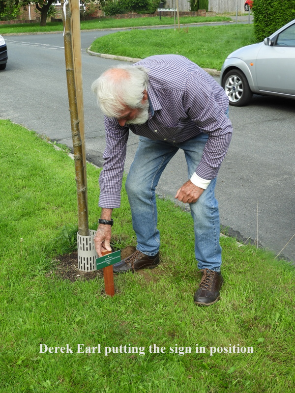 Planting our Tree Sign